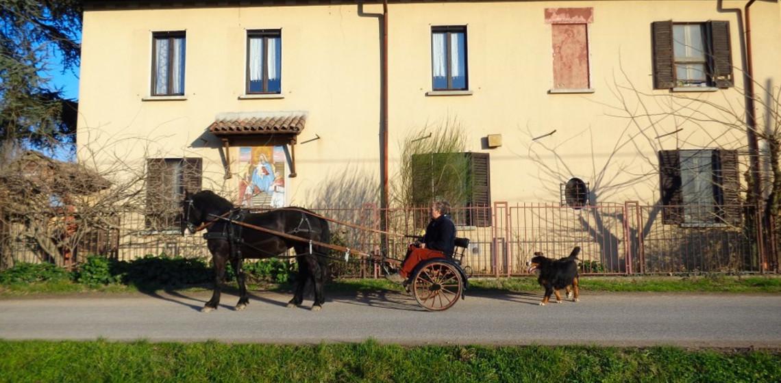 Blog_Cascina-Isola-Maria_agricoltura-biologica_agriturismo