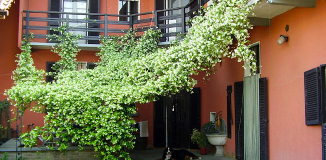 Blog_alloggio_Cascina-Isola-Maria_agricoltura-biologica_agriturismo
