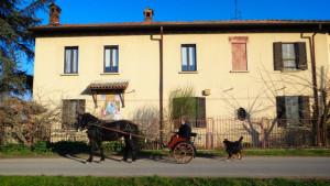 Cascina-Isola-Maria_agricoltura-biologica_agriturismo_BB_galleria01